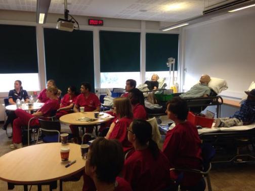Practice Nurse Educators